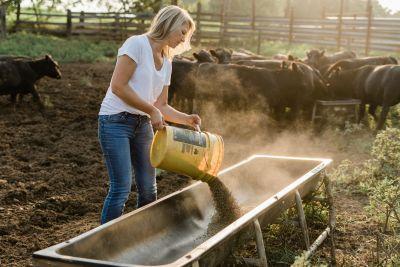 Meredith Bernard on the farm